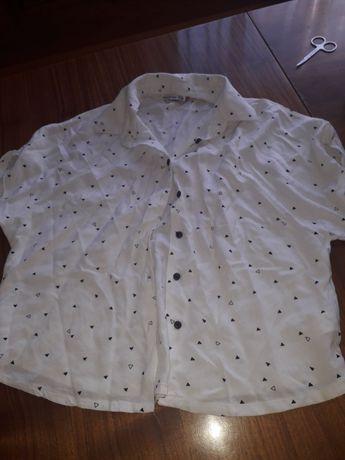 3 Koszule+spodnie H&M 146