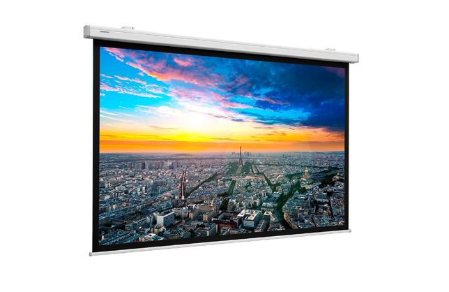 Экран для проектора Projecta (весь модельный ряд) ОФИЦИАЛ