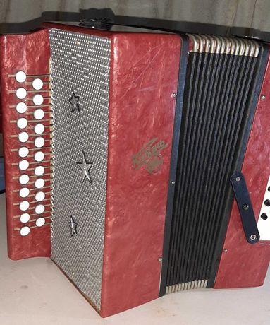 Akordeon harmonia guzikówy.