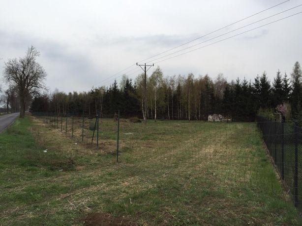 Działka budowlana Stary Widzim 3000 m2. 0.3000 ha-Możliwość Podziału