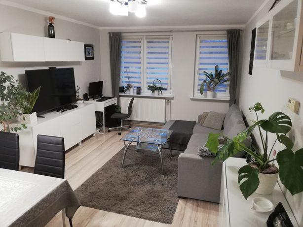 Mieszkanie własnościowe w Mieszkowicach
