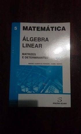 Livro Álgebra linear - matrizes e determinantes Vol. 1