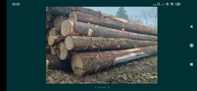 Drewno tartaczne (świerk, sosna). Kupi