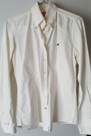 Camisa S nova sacoor