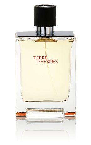 Hermes Terre D'Hermes Men Eau de Toilette 50 ml