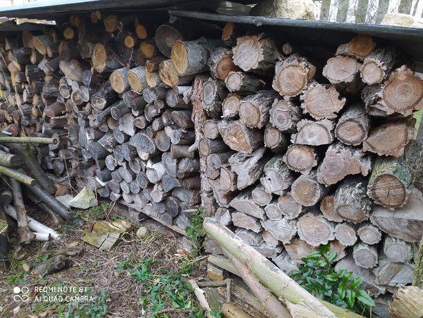 Drewno opałowe dąb/akacja w wałku. Możliwość pocięcia i dowozu.