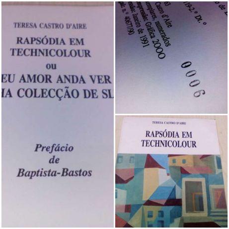 Teresa Castro D'aire.