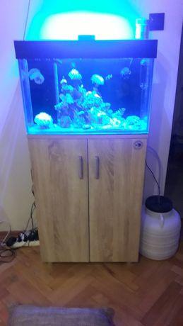 Zestaw akwarium z osprzętem