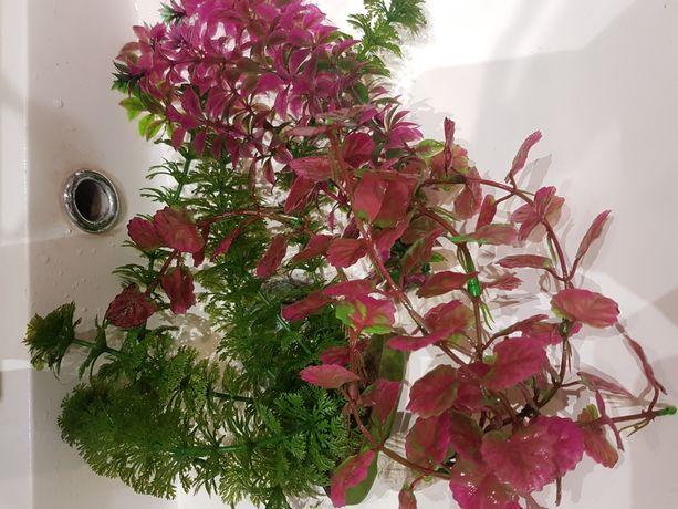 Roślinki sztuczne