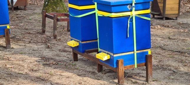 odklady pszczele