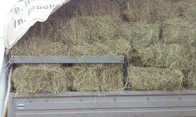 Продажа сено и дров твердых пород.