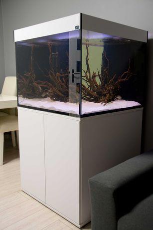 Zestaw akwariowy 310 litrów