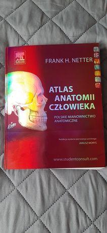 Atlas Anatomii Człowieka Netter