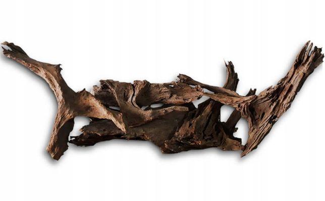 Korzeń 10 - 16 cm Terrarium Wąż Agama Pająk Żółw Kurier Wysyłka