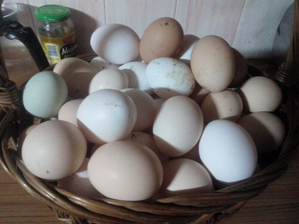 Jajka wiejskie 30szt