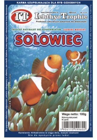 Solowiec artemia blistry 100g mrożony pokarm dla ryb