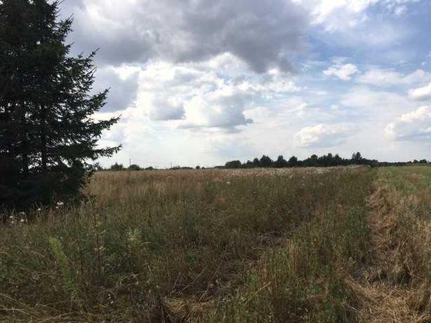 Dzierzawa ziemi rolnej Nowy Dwor (podlaskie)