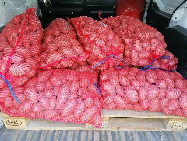 Sacas de batata nova, 20kg