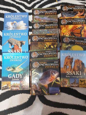 Encyklopedia zwierząt 12 książek