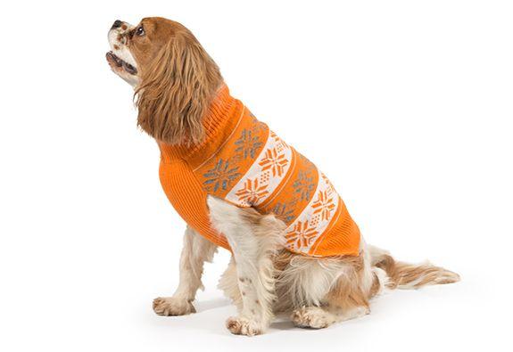 Piękny sweterek pomarańcz NORDIC