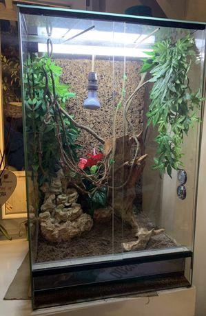 Terrarium wyposazone - na kameleona 80x50x50