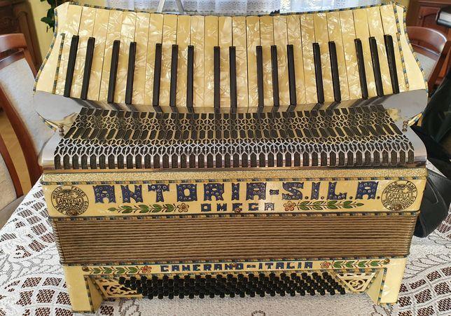 Akordeon Antoria Sila harmonia