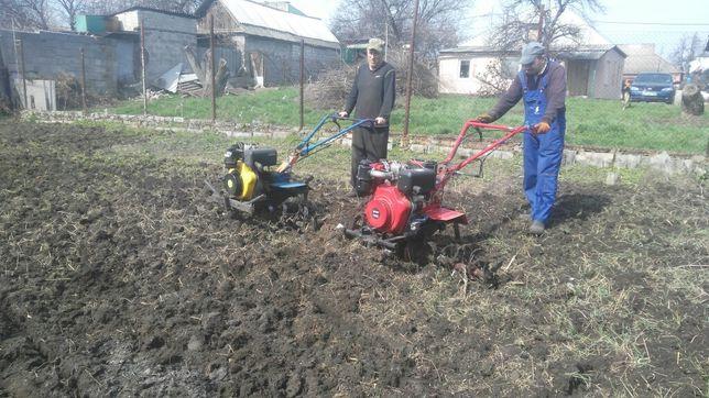Вскопка огорода , мотоблоком услуги , покос травы ,уборка территории