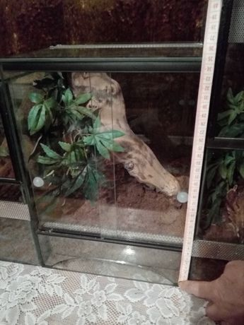 Terrarium szklane 25x25x35 cm drzwiczki rozsuwane w poziomie