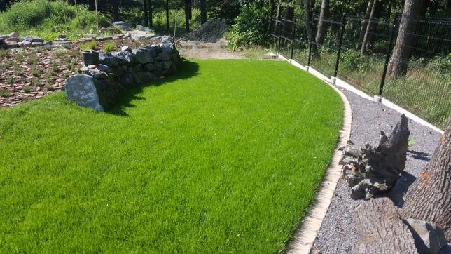Trawa z rolki, trawniki rolowane