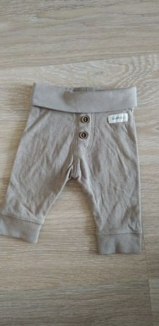 Spodnie dresowe dla chłopca Newbie x2
