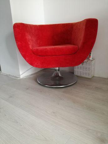 Fotel obrotowy muszelka