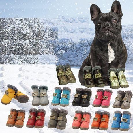 Согрейте лапки своего любимца!!! Зимняя обувь для собак
