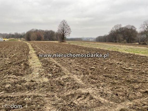 Działka rolno-budowlana Wodzisław Śl - Kokoszyce