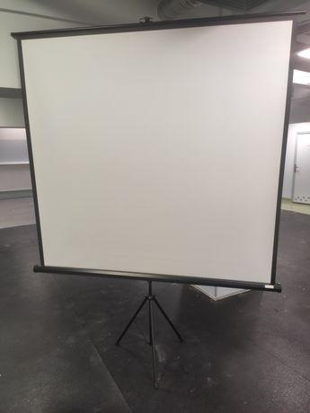 Profesjonalny ekran do projektora z pokrowcem 180 x 180 Schoolline