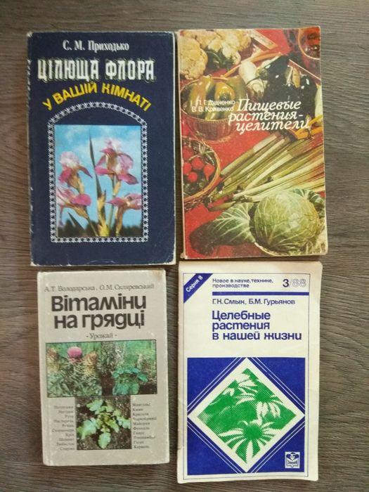 Цiлюща флора у вашiй кiмнатi Целебные растения Пищевые растения целите Киев - изображение 1