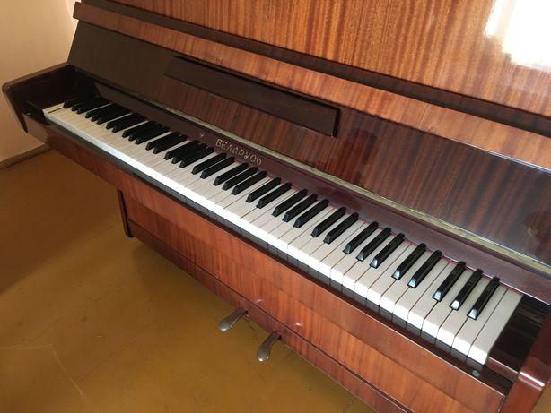 Pianino TAKA CENA TYLKO DO 10 marca!!