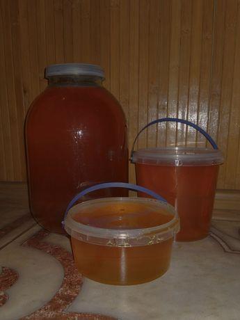 Мёд разнотравье 2021 август