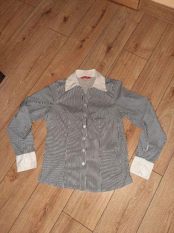 Koszula w paski, elegancka koszula