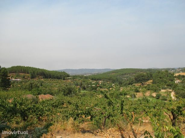 Terreno Alcaide Fundão