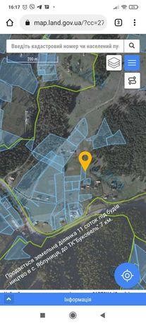 Земельна ділянка біля Буковелю