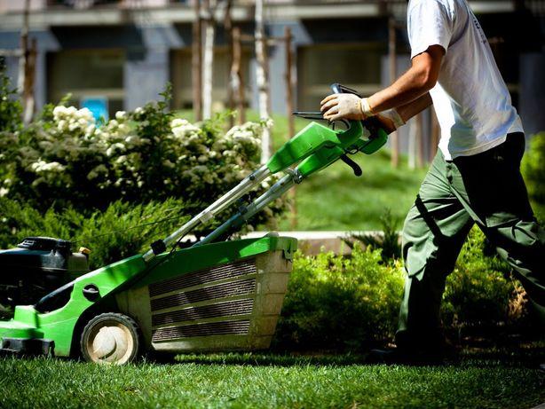 Manutenção Jardins e Limpeza Terrenos