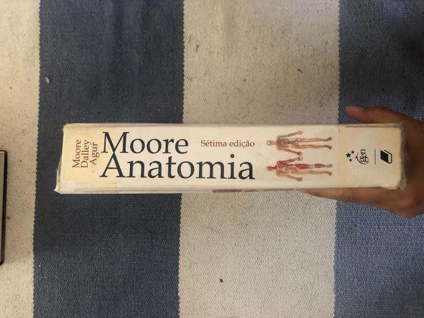 Livro moore anatomia