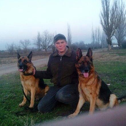 Дрессировка собак в Новой Каховке.