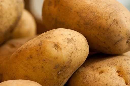 Ziemniaki jadalne rozmiar sadzeniaka Lilly