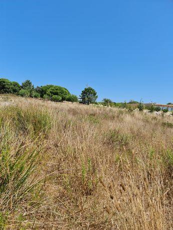 Terreno no centro de Vale figueira