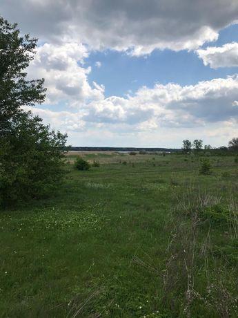 Земельный участок на берегу Краснооскольского водохранилища