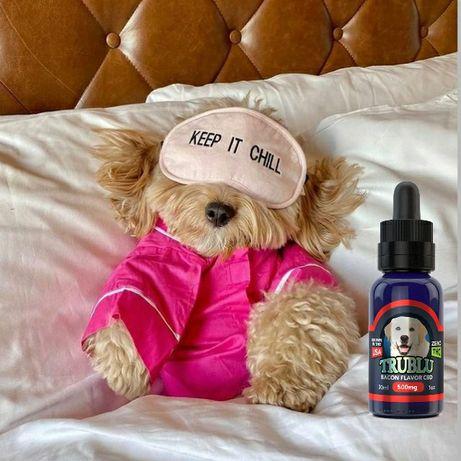 CBD масло для животных США