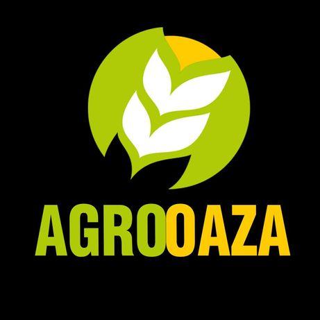 Kukurydza AGRO GANT materiał siewny nasiona