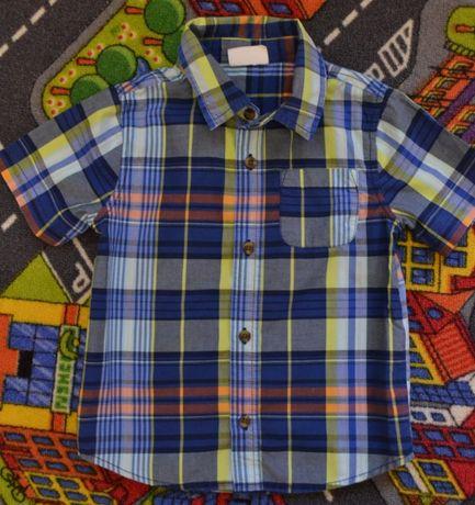 Рубашки Crazy 8 для хлопчика