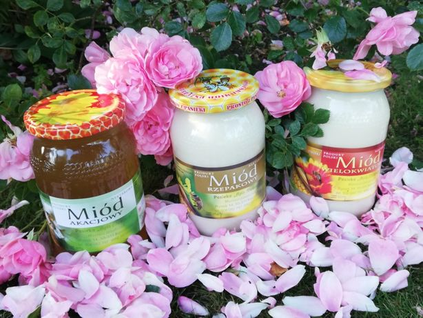 Miód akacjowy_Naturalny miód pszczeli z własnej pasieki